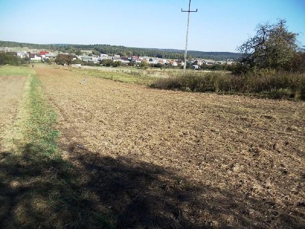 Działka Kostomłoty Drugie 5 Km Od Kielc